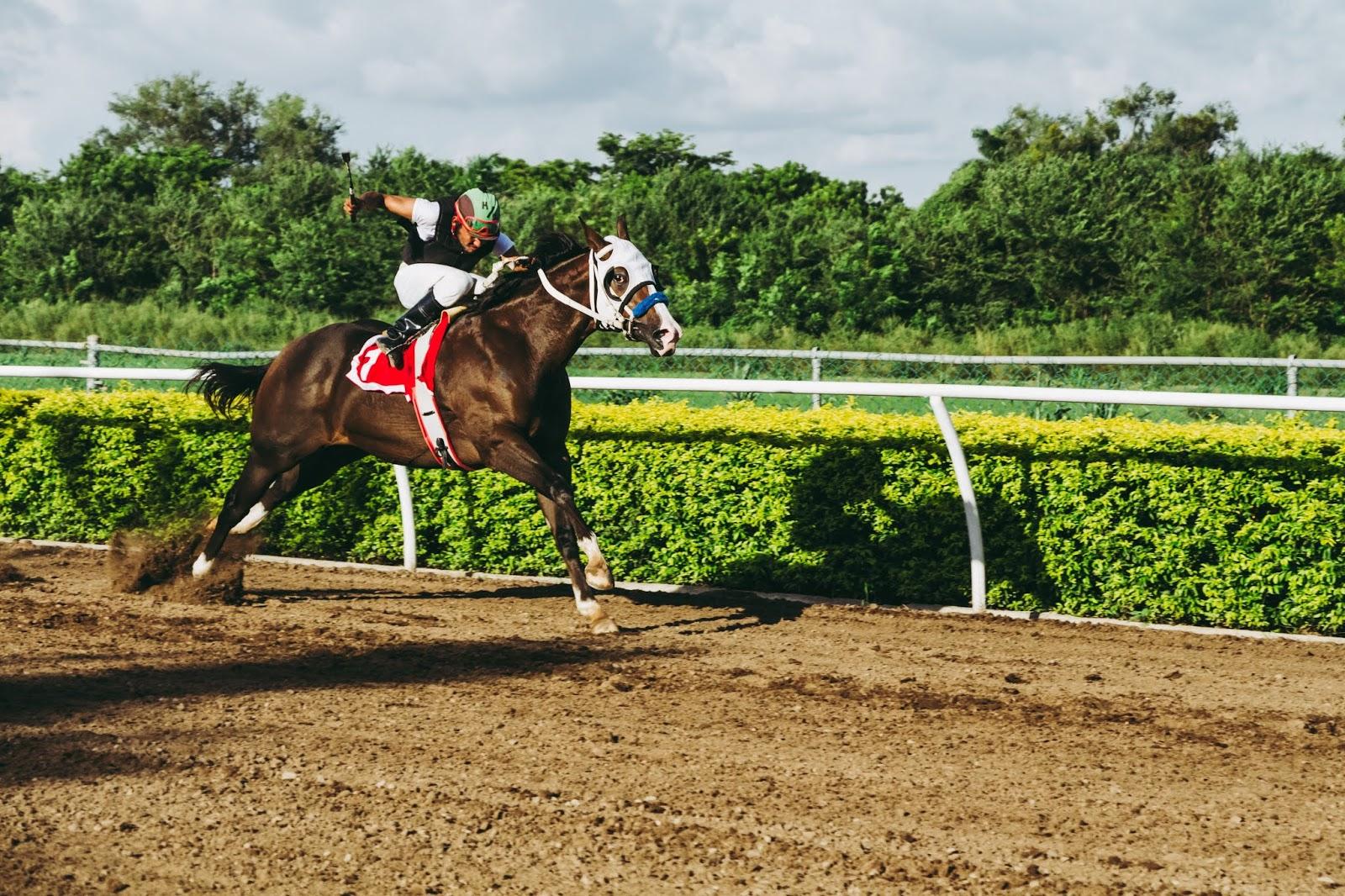 MKINDIANHORSERACETIPS: DELHI HORSE RACING FREE TIPS TODAY 28