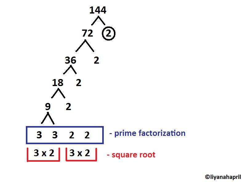 817 Math Blog (2011): Liyanah's Scribe Post