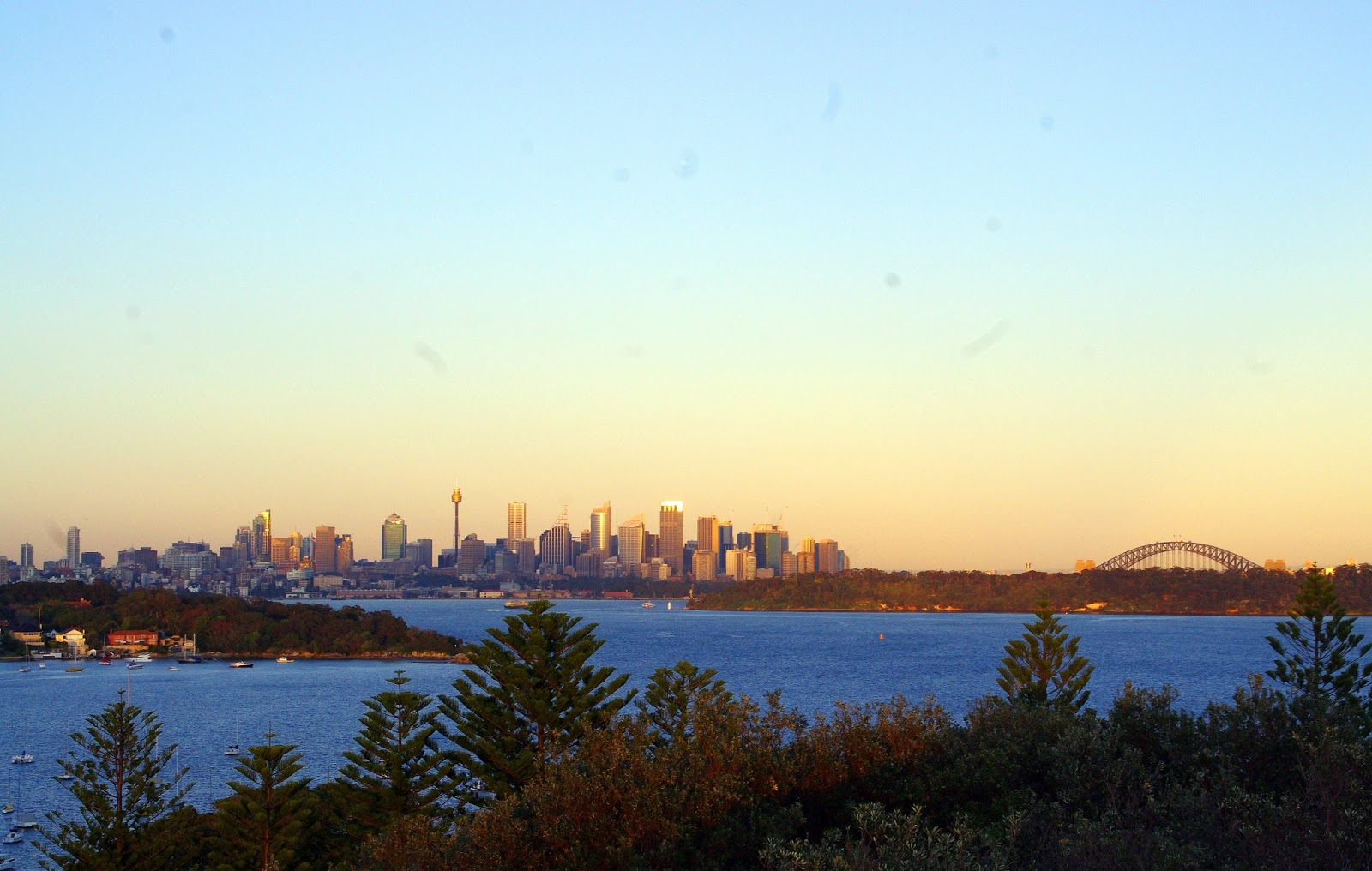 Sydney skyline within the rising sun