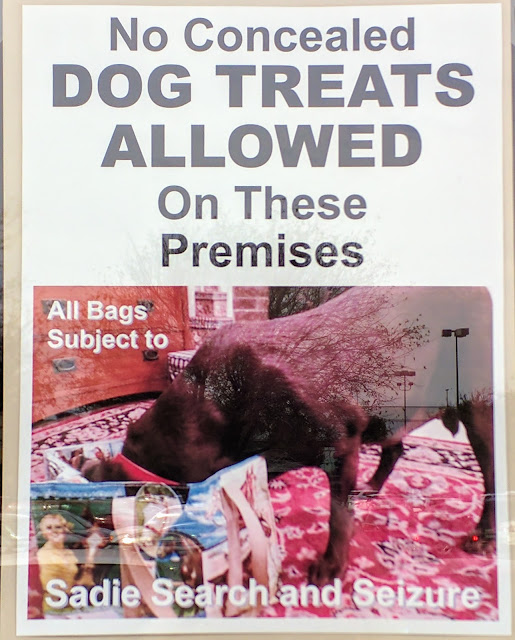 Dog treat sign at Bernina quilt shop, Plano TX