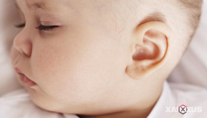 Fakta 6 - Telinga janin 24 minggu mulai sensitif
