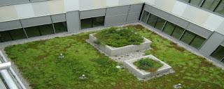 zelena streha sestava