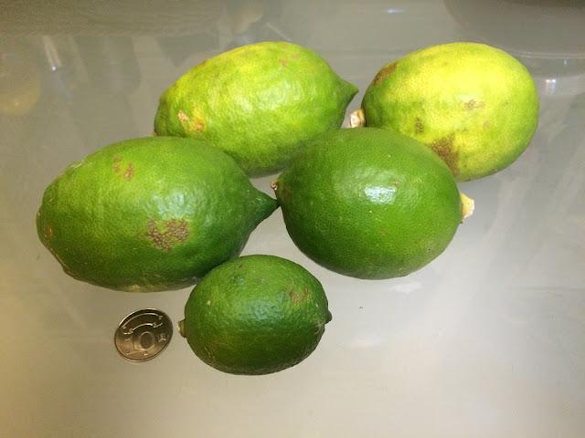 檸檬塔材料的主角也可由檸檬換成超大顆的有機香水檸檬或萊姆。