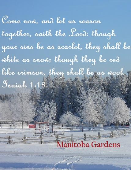 Isaiah 1:18 White as snow