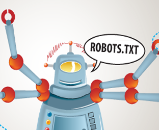 how to fix robots txt test
