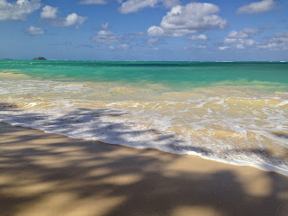okyanus kıyısı ile ilgili görsel sonucu