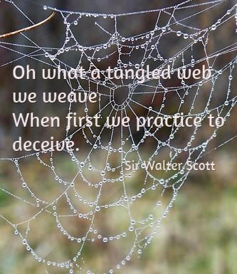 Spider Web with Scott Quote, photo from Pixabay