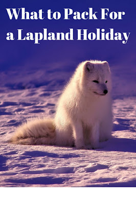 Arctic fox on a snowy landscape.