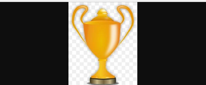 Zealmatblog 2016 Domain Name Award  for Beginners