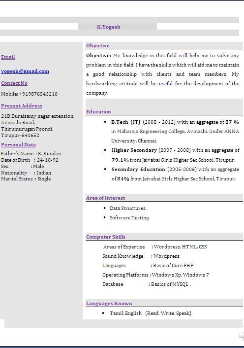 eye catching resume templates free download