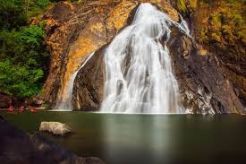 Stream of Dudhsagar falls