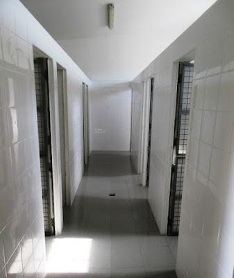 Obras de remodelação do Canil Municipal de Silves foram concluídas