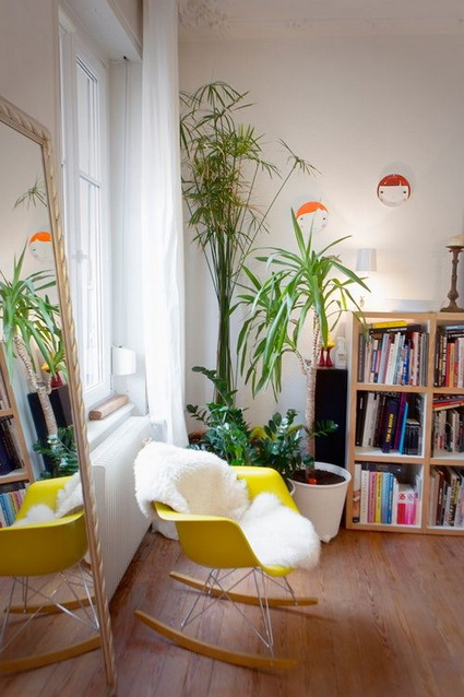 How To Using Plants Decorating Ideas For Interiors 4