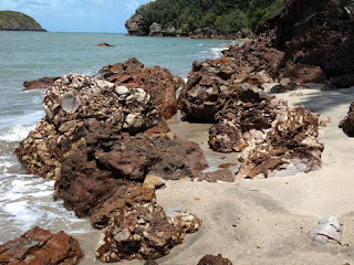 Breccia on beach at Cape Hillsborough