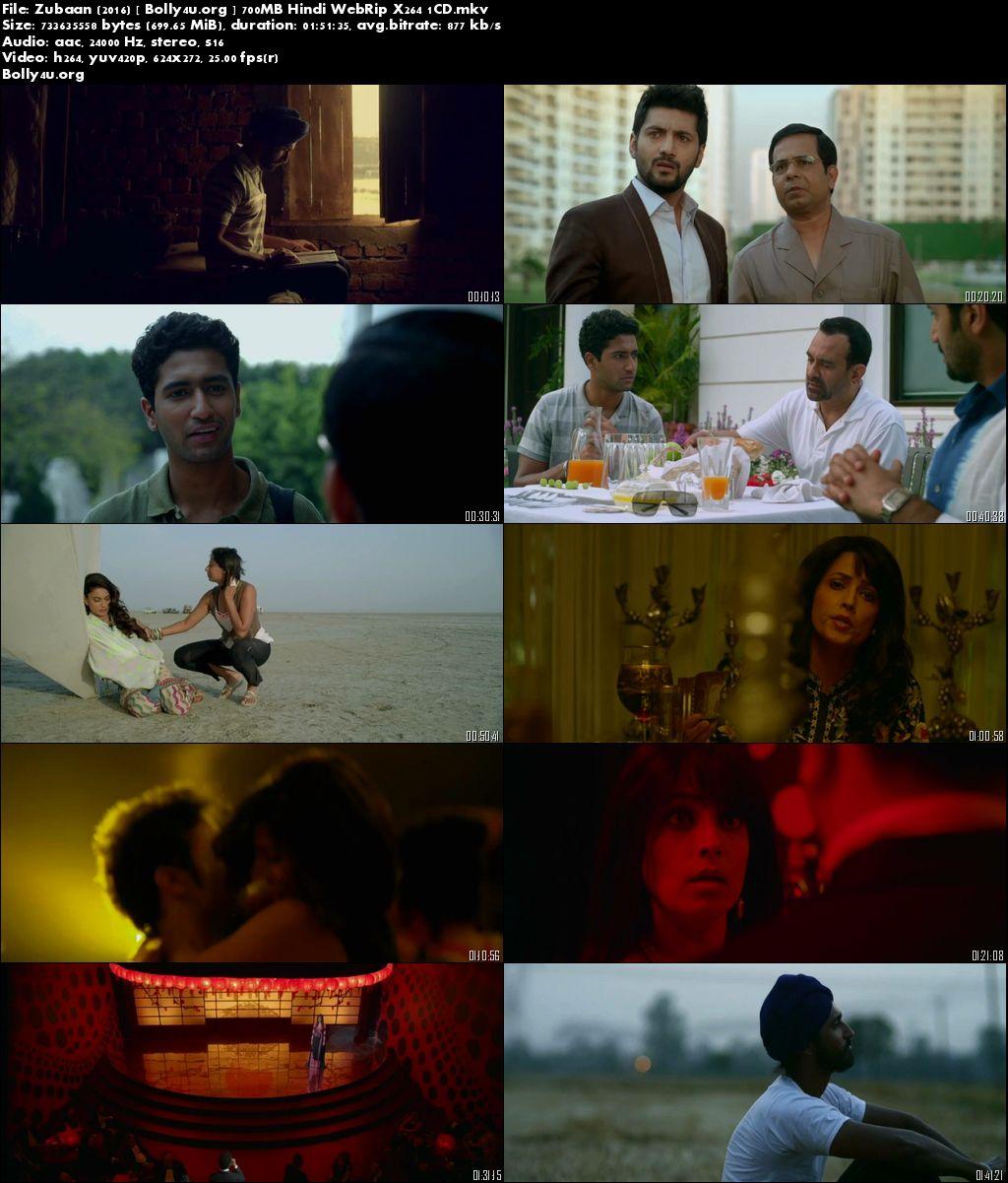 Zubaan 2016 WEBRip 720p Hindi Movie 700MB x264 Download