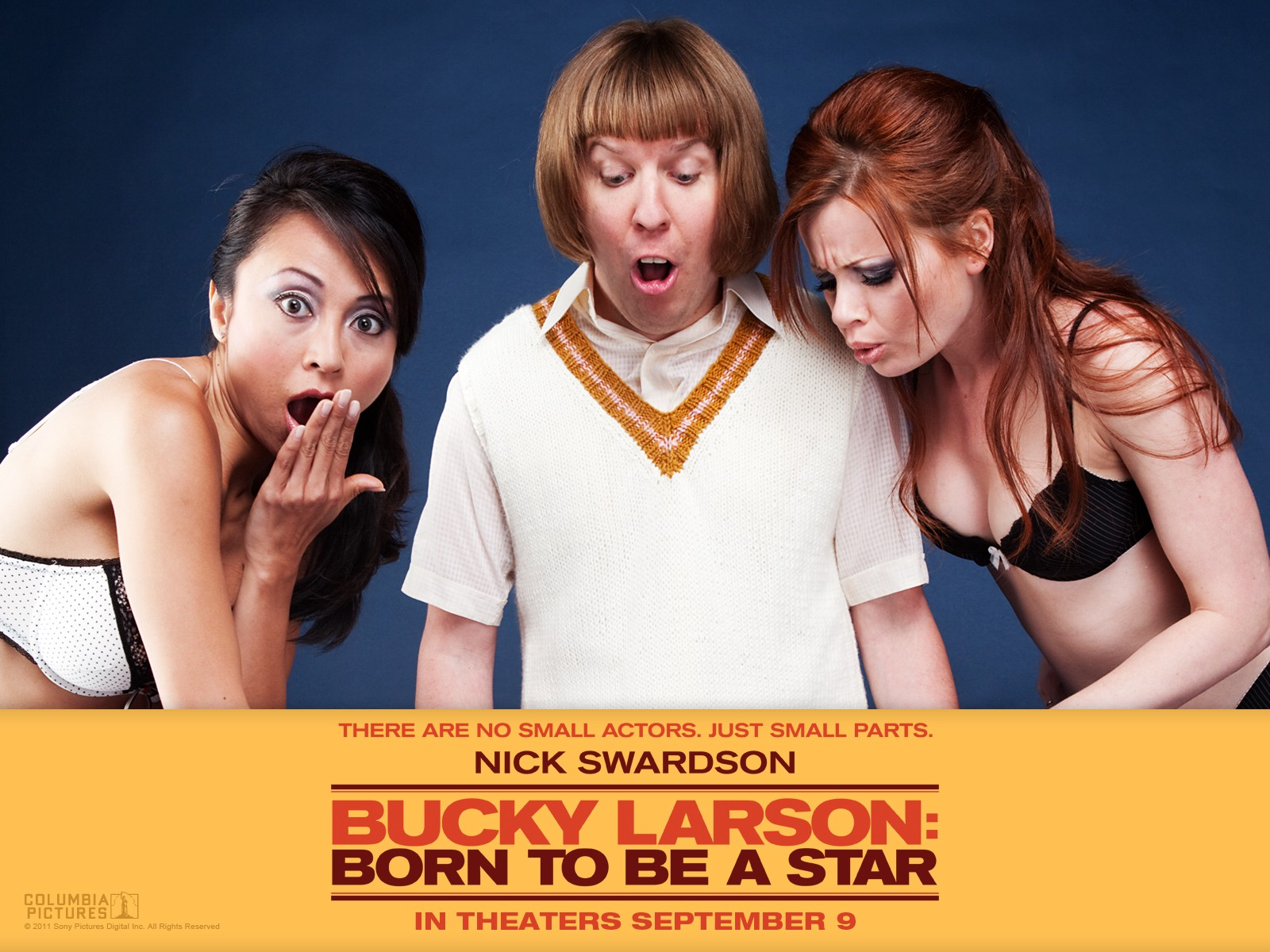 Progressive Values: DVD Review: BUCKY LARSON: BORN TO BE A ...