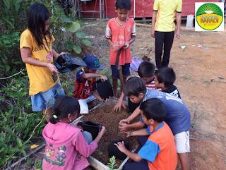 melatih anak cinta lingkungan