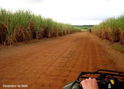 Aventura em Pipa - passeio de quadriciclo