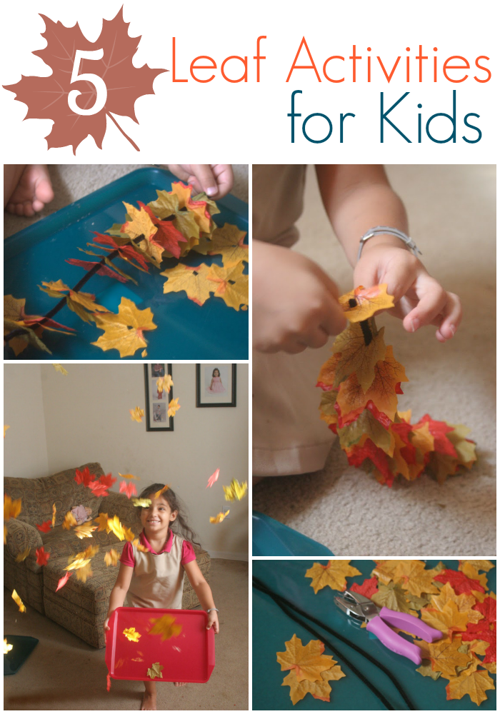 5 Simple Leaf Activities - The Educators' Spin On It