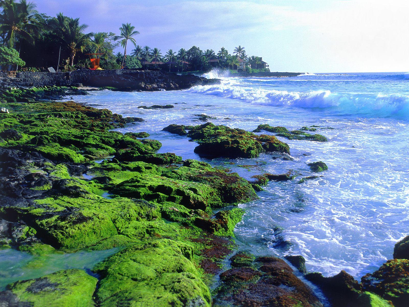Tourism: Hawaiian Islands