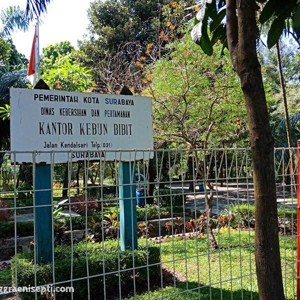 Jalan-jalan ke Kebun Bibit Wonorejo Surabaya