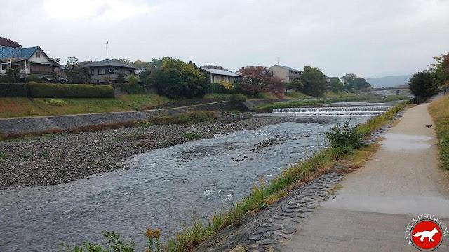 rivière kamo à Kyoto