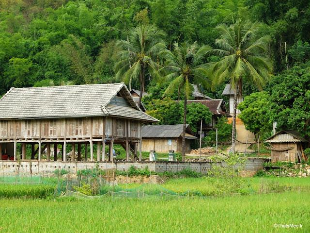 vietnam voyage 15jours mai chau nord montagne riziere thai blancs, maison sur pilotis mai chau