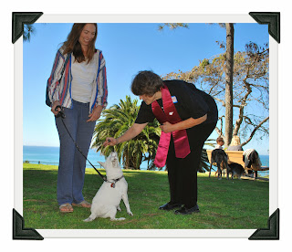 blessing dog in Pines Park San Clemente