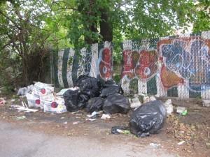 Queens Crap Illegal Dumping In Ozone Park