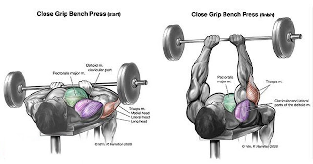 Mass Building Triceps Exercises