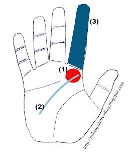 यदि व्यक्ति के हाथ में गुरु पर्वत सामान्य से ज्यादा उभरा हुआ है तो ऐसा व्यक्ति घमण्डी और मुफठ होता है।