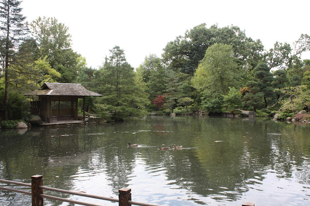 Pond serenity at Anderson Japanese Gardens in Rockford, Illinois