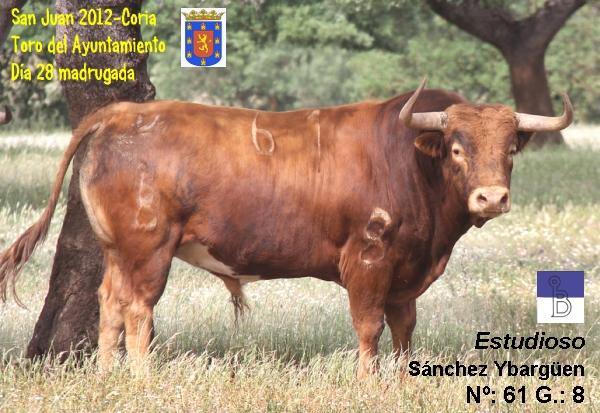 Se hacercan fechas señaladas para Coria...-http://4.bp.blogspot.com/-pe_RX2lfFrk/T8bAvfFPwkI/AAAAAAAAEiA/EpDMYJbzOas/s640/SJ12_10_28n_Ay_Estudioso-N61-G8_SanchezYbarguen-txt_600x344.jpg