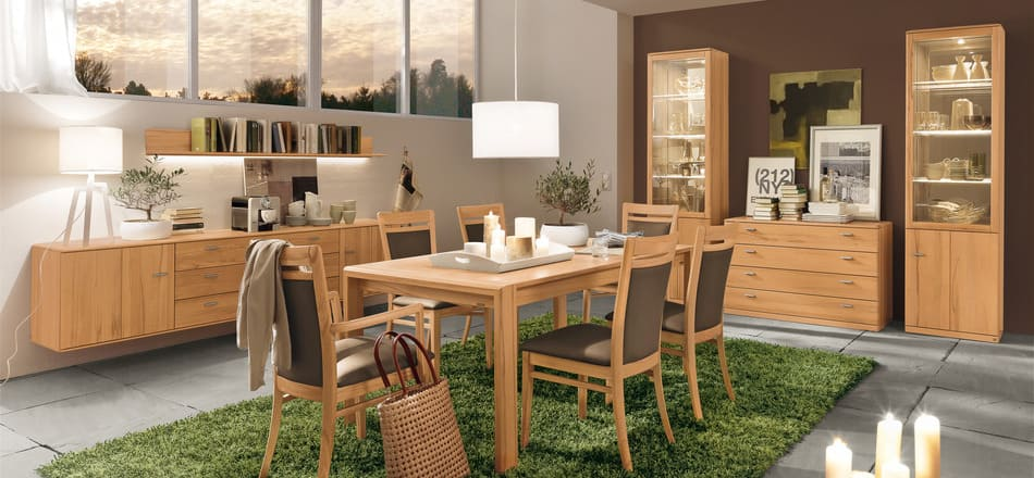 Modern dining rooms with pictures
