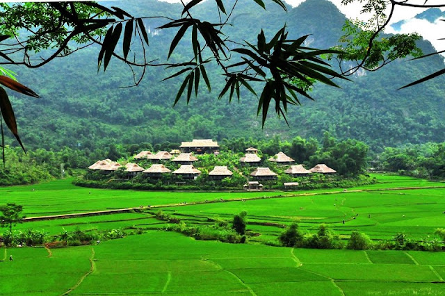 The beauty of wild nature at Mai Chau Ecolodge