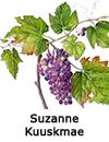 http://www.suzannekuuskmae.com/