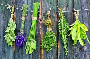 Best Kitchen Herb To Smoke