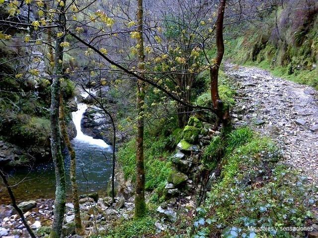 La ruta del Alba, Parque Natural de Redes, Asturias