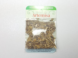 Plantas Mágicas: Artemisa