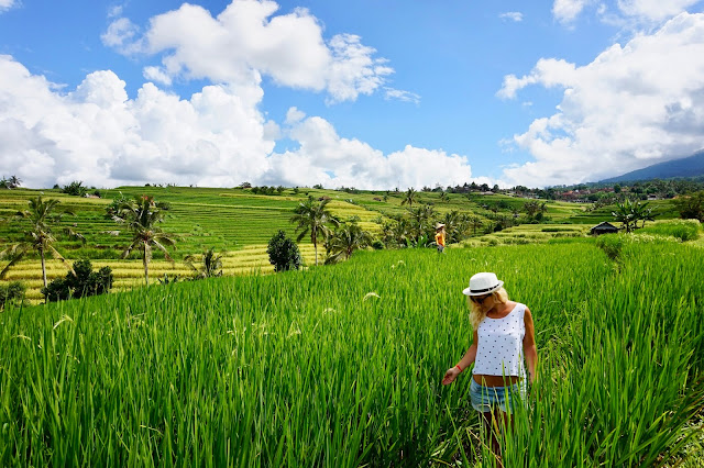 adventure, asia, backpacking, backpacks, bali, flip flops only, indonesia, island, itinerary, temples, things to do, travel, ubud, wanderlust,