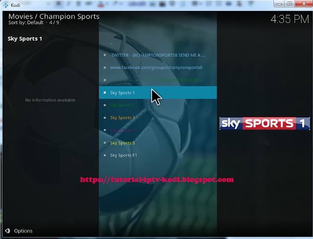 Watch EPL stream with Sky sports channel champion sports kodi addon