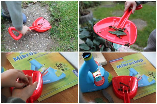 Material MINT Spielzeug tausendkind Geschenkideen Forscher Mikroskop Kindergartenkinder Jules kleines Freudenhaus