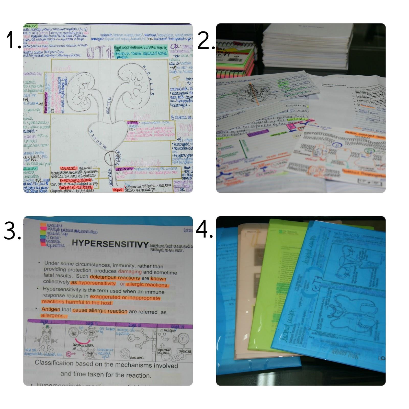 Visual Study Aids