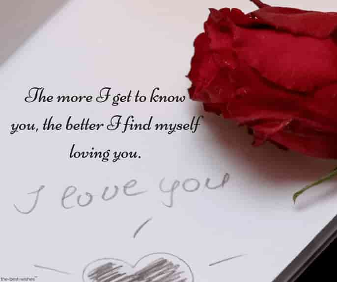 deep good morning text for her with red rose i love you