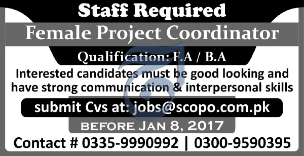 Female Project Coordinator F.A and BA,Based JObs