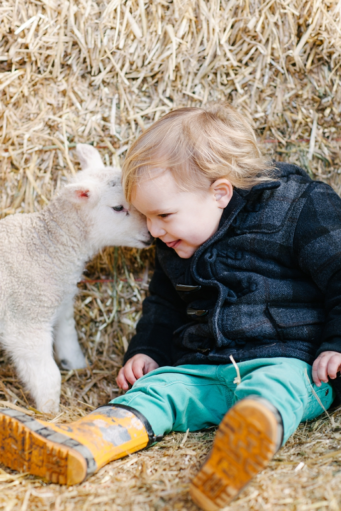cute baby with a lamb photo by STUDIO 1208