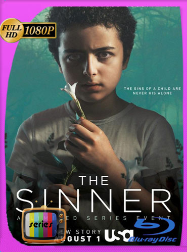 The Sinner Temporada 1-2-3 HD [1080p] Latino Dual [GoogleDrive] ​TeslavoHD