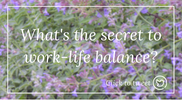 life in the balance book review
