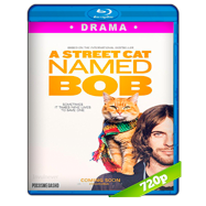 A Street Cat Named Bob (2016) BRRip 720p Audio Ingles 5.1 Subtitulada