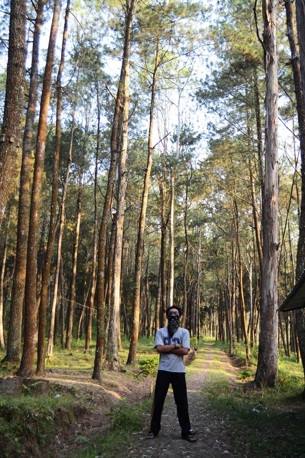 Tahukah Kalian Apa Itu Long Shoot Blog Banten Kamera